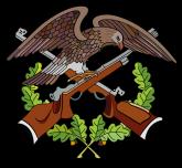 logo_eagle